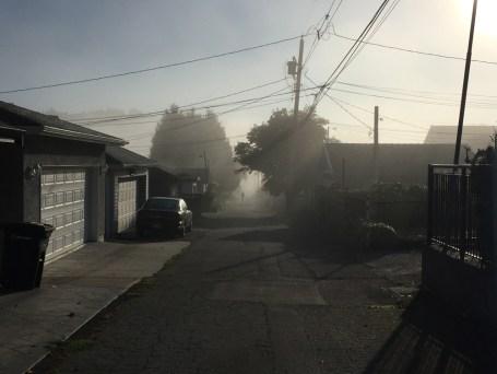 morning-fog2