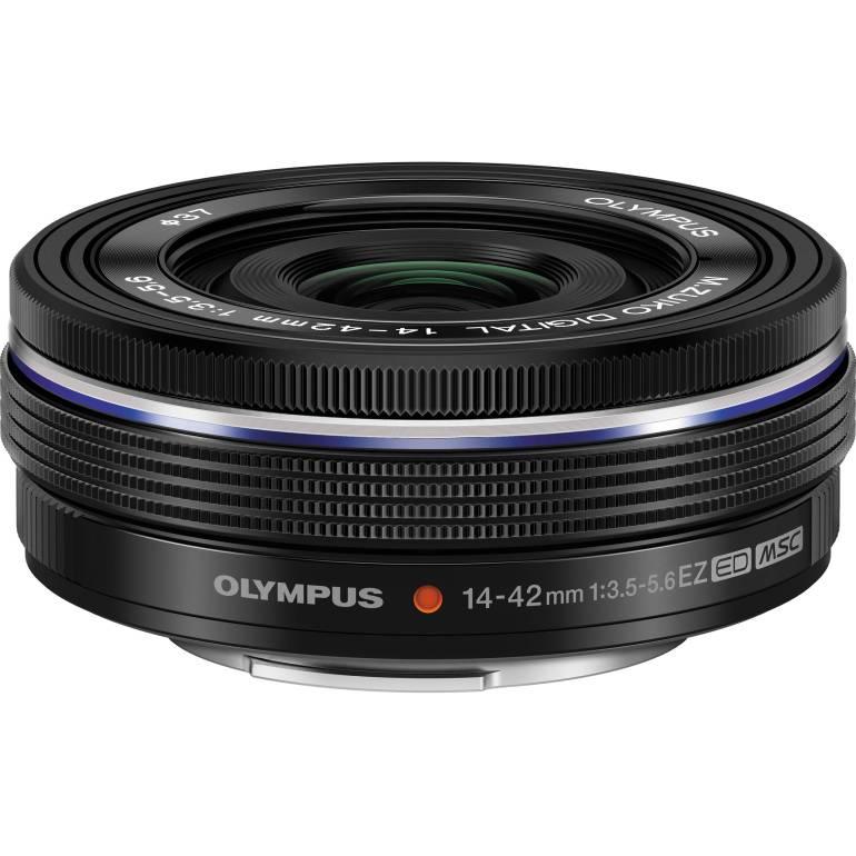 Olympus 14-42mm Lens | Amazing Travel Photography Gear | TravelingPetiteGirl.com
