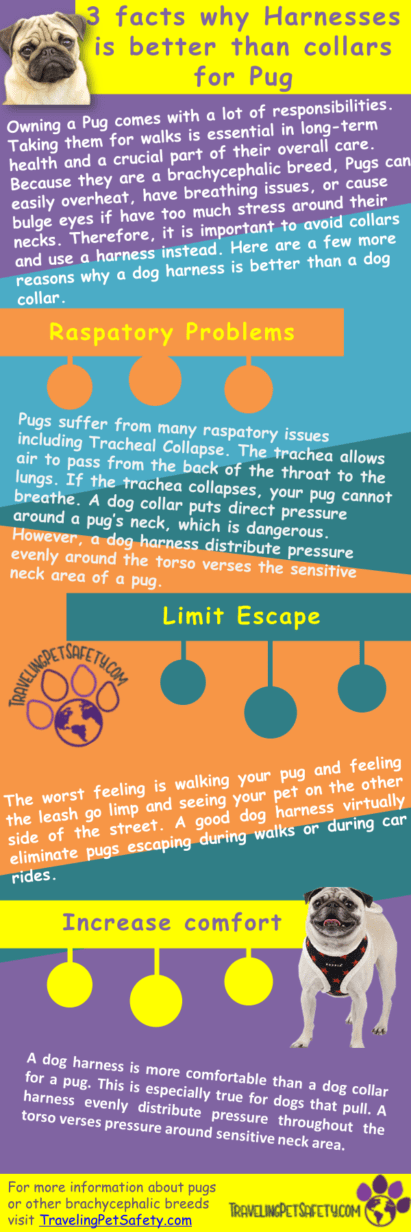 escape free dog harness infographic