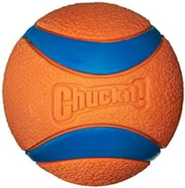 Chuck-it ball for large dogs