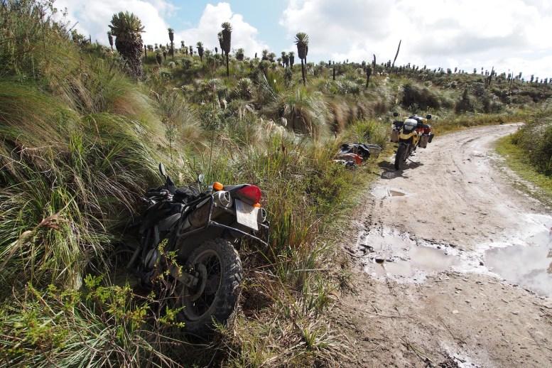 Micha parkte sein Bike im Graben