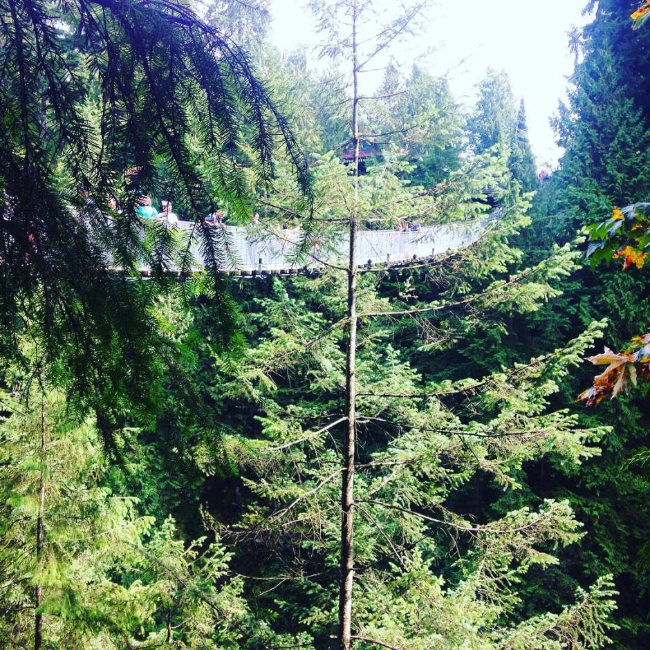 The Capilano Suspension bridge in Vancouver BC! Great views of the treetops and river below. Has anyone else been?