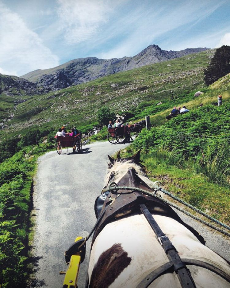 Day 5 of my #Ireland countdown is one of my favorite experiences of taking #jauntingcarts through the Gap of Dunloe! Such an amazing and beautiful experience.