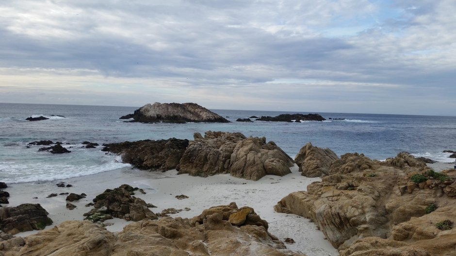 21 Stops to Make on the 17 Mile Drive in California| Traveling Spud