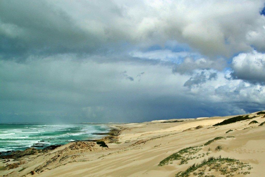The Whale Hiking Trail