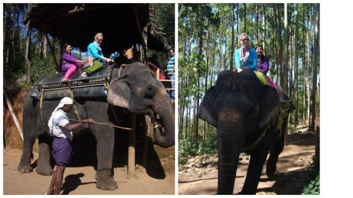munnar-elephantriding