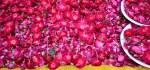 Reisen 2016 Indien Blumen Hazrat Nizamuddin