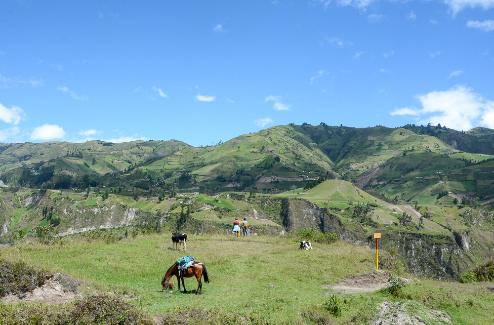 Traveling the World Ecuador Wandern Quilotoa Loop Anden Toachi Canyon Flowers Horses Cows