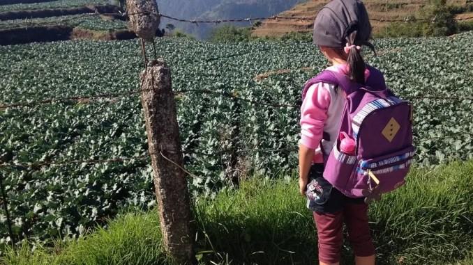 TRAVEL THROUGH THE EYES OF CHILDREN 1 678x381 - Travel Through The Eyes Of Children