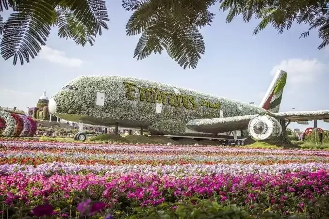 Dubai Miracle Garden - Family Holidays In Dubai