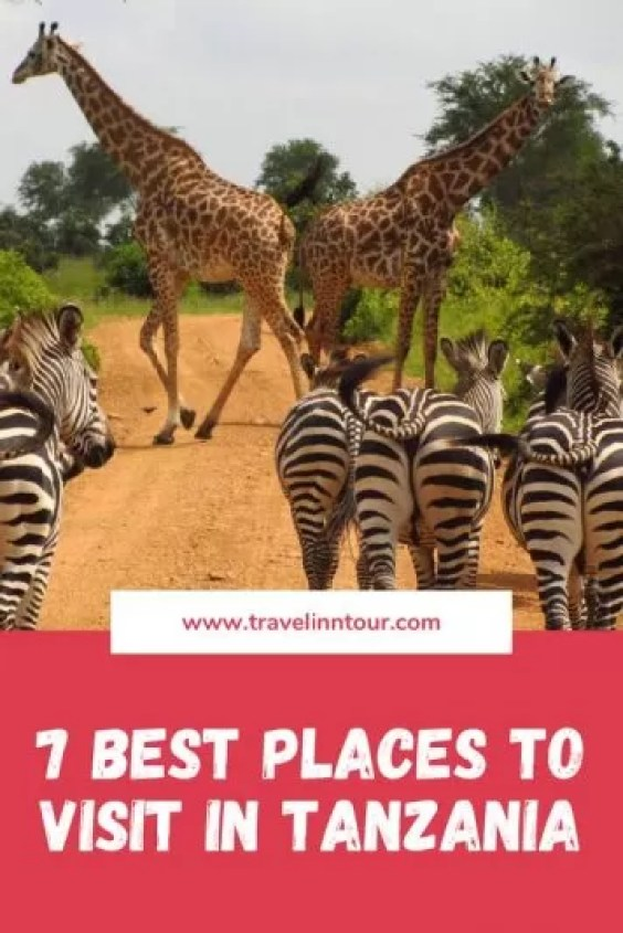 Best Places to Visit in Tanzania - 7 Best Places to Visit in Tanzania