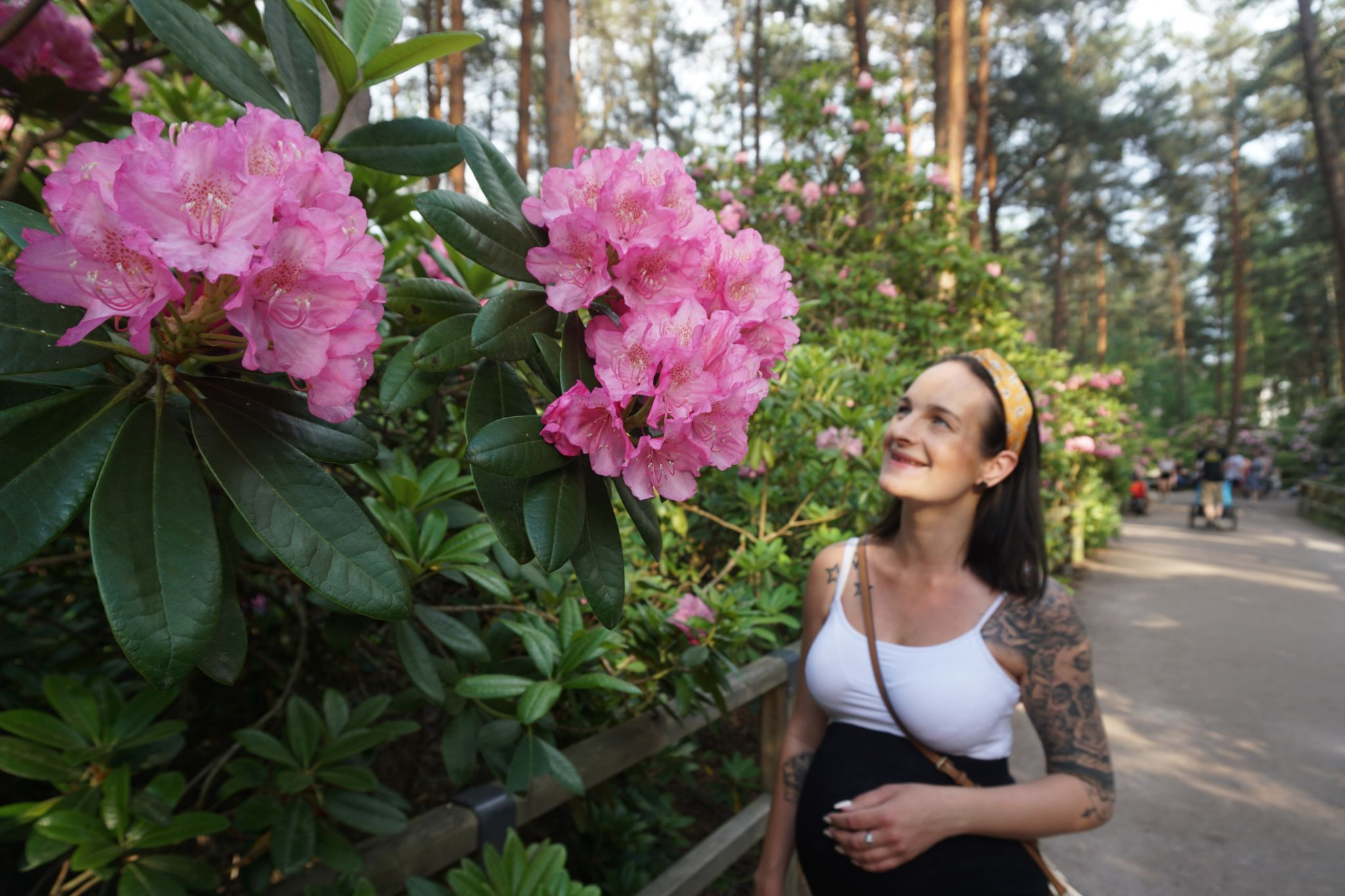 The best time to visit the Rhododendron Park in Helsinki is during the first weeks of June