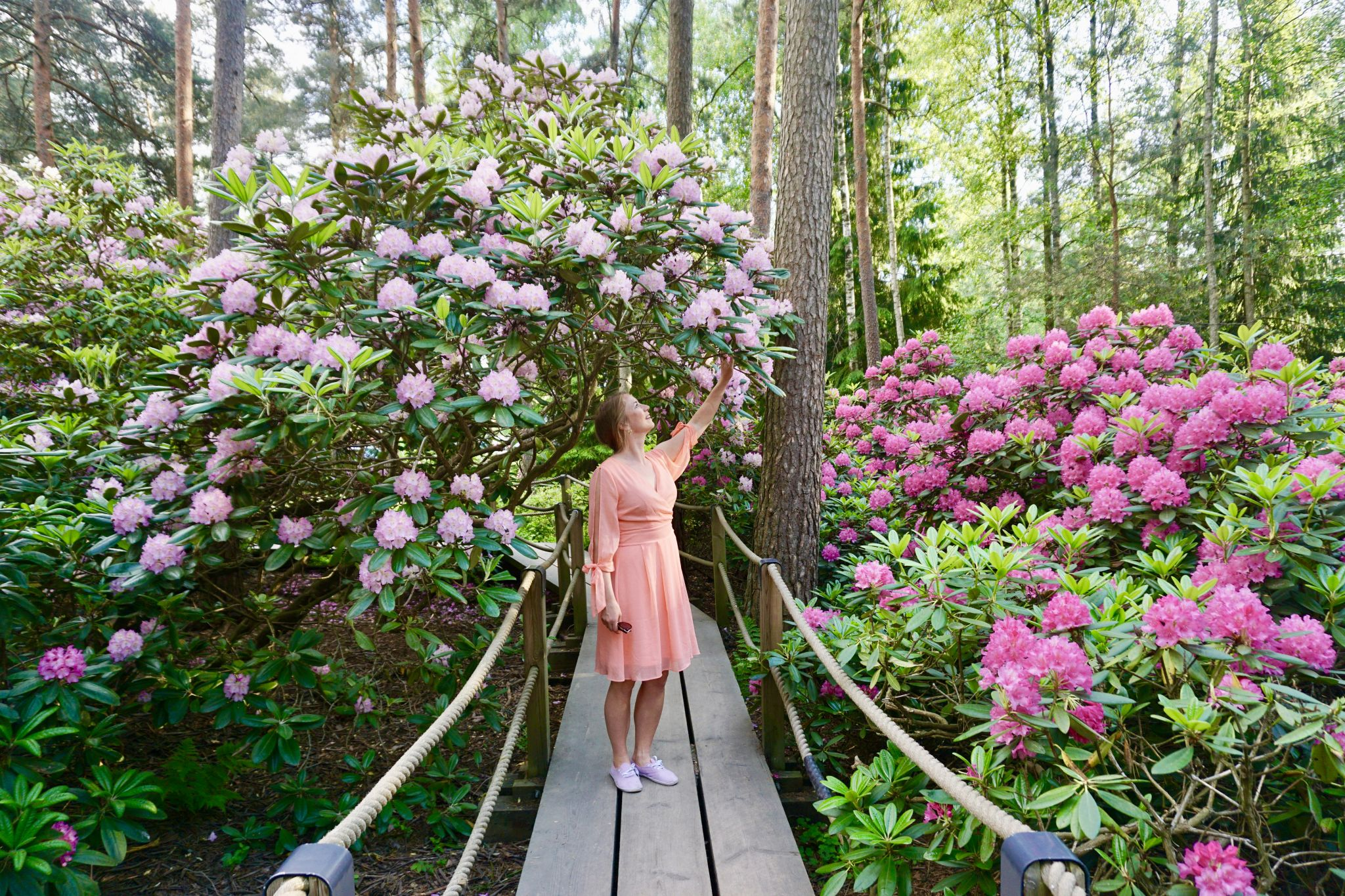The Rhododendron Park in Helsinki is a must-visit