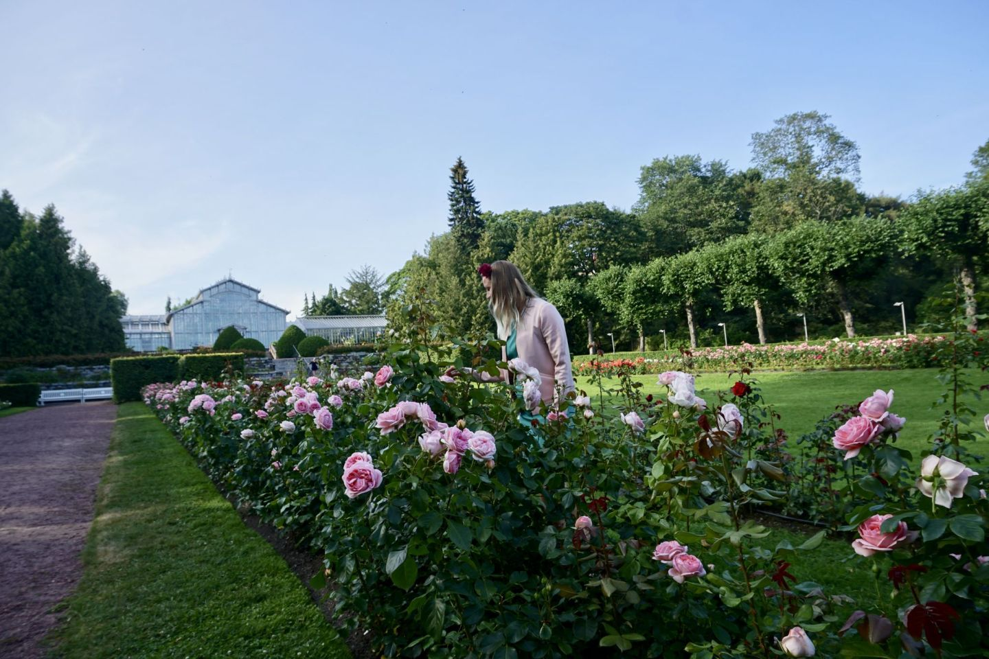 Visiting the Rose Garden by the Winter Garden in Helsinki is free