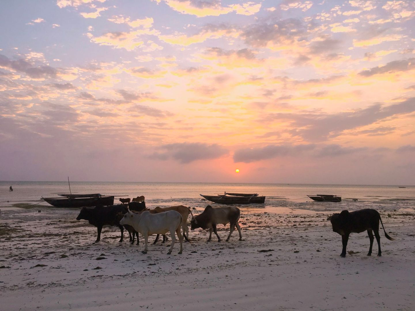 Sunrise on Jambiani beach on Zanzibar