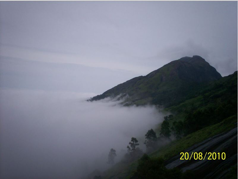 Munnar by Travel Jaunts