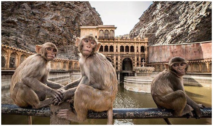 Top Jaipur Attractions and Places to Visit