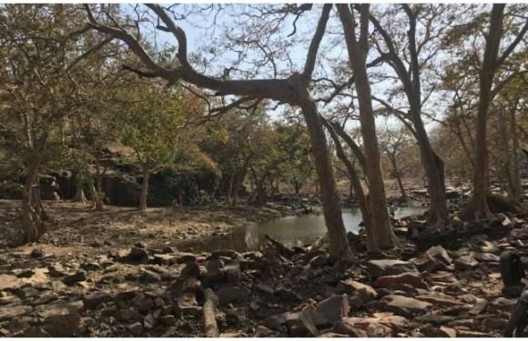 Madhya Pradesh Tourism: सागर से 35 किमी दूर हैं ये शैल गुफाएं