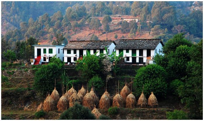 Binsar Travel Guide, Binsar Bird Sanctuary, Hill Station in Uttarakhand, Binsar Best Travel Spots, Where to Travel in Binsar, How to Visit Binsar
