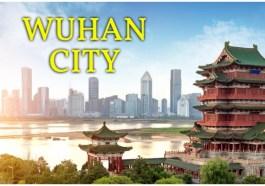 Yellow Crane Tower,Wuhan Haichang Polar Ocean World,Hubu Lane,East Lake,Wuhan Yangtze River Bridge,Wuhan University, Wuhan Garden Expo Part, Where to Travel in Wuhan, Wuhan Travel Guide, Wuhan Full Information