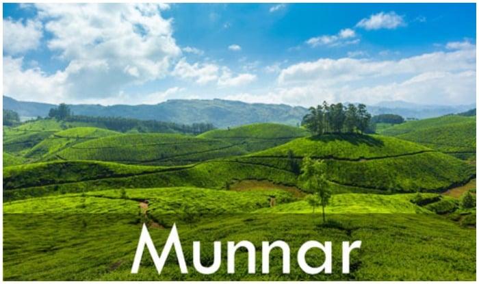 Munnar hill station , Munnar , मानसून में कहां घूमें, मानसून में घूमने की जगहें
