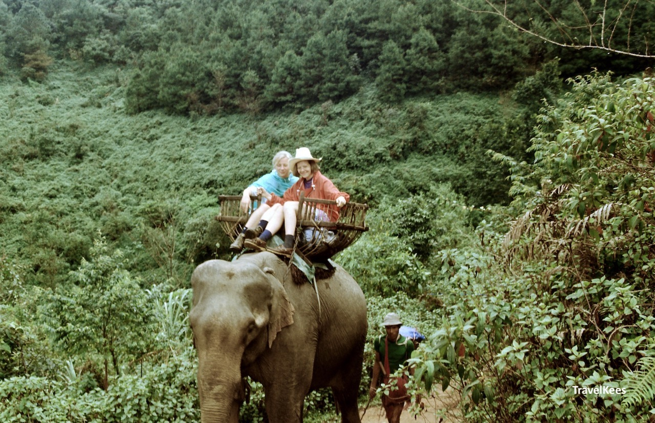 olifant trekking