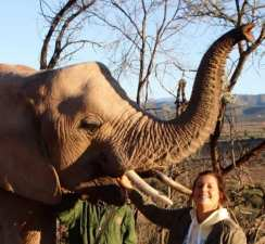 Kate with Elephant in South Africa