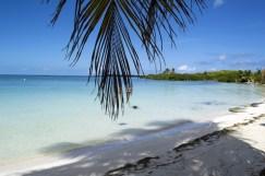 Isla Contoy Messico 2