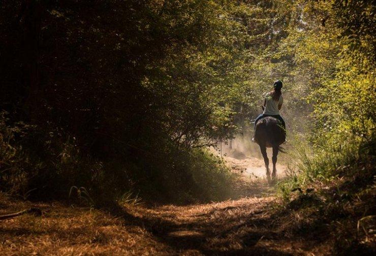 cavallo valgrande bibione