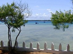 Isola di Wasini (6)