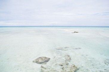Tikehau Polinesia Francese