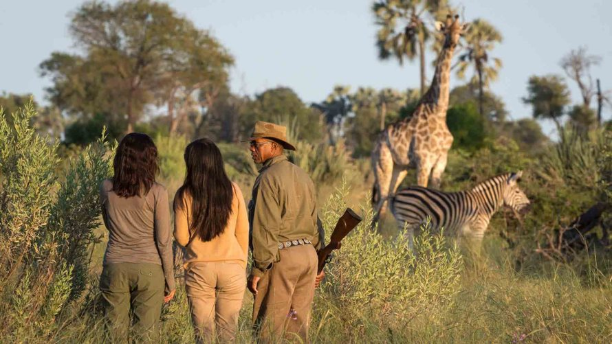 botswana travel line uk