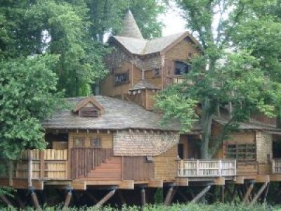 Large treehouse in the woods