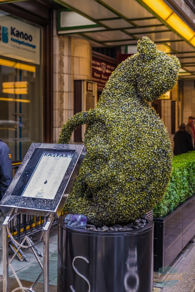 The Black cat of the Savoy hotel, London in the greenery