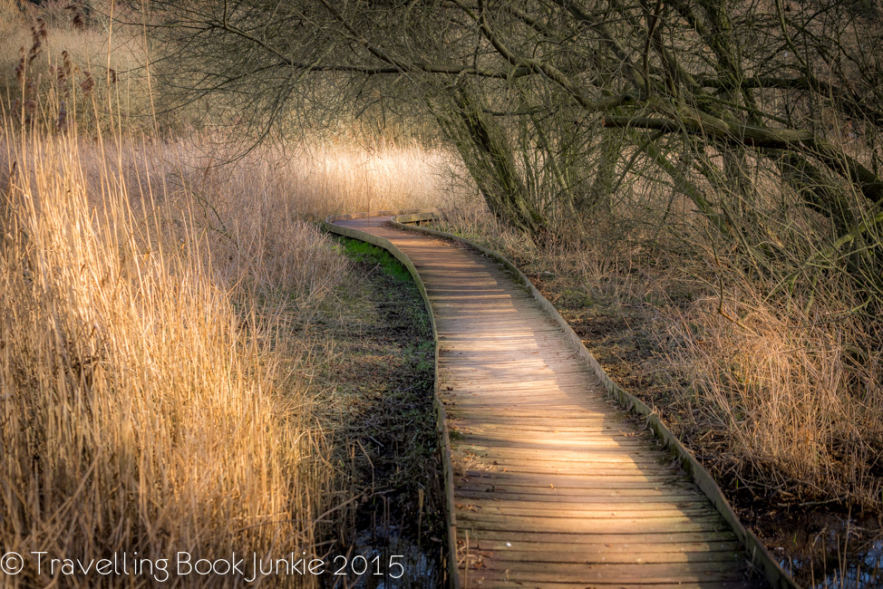 meadow trail thorpe forest forest holidays thetfors forest norfolk uk