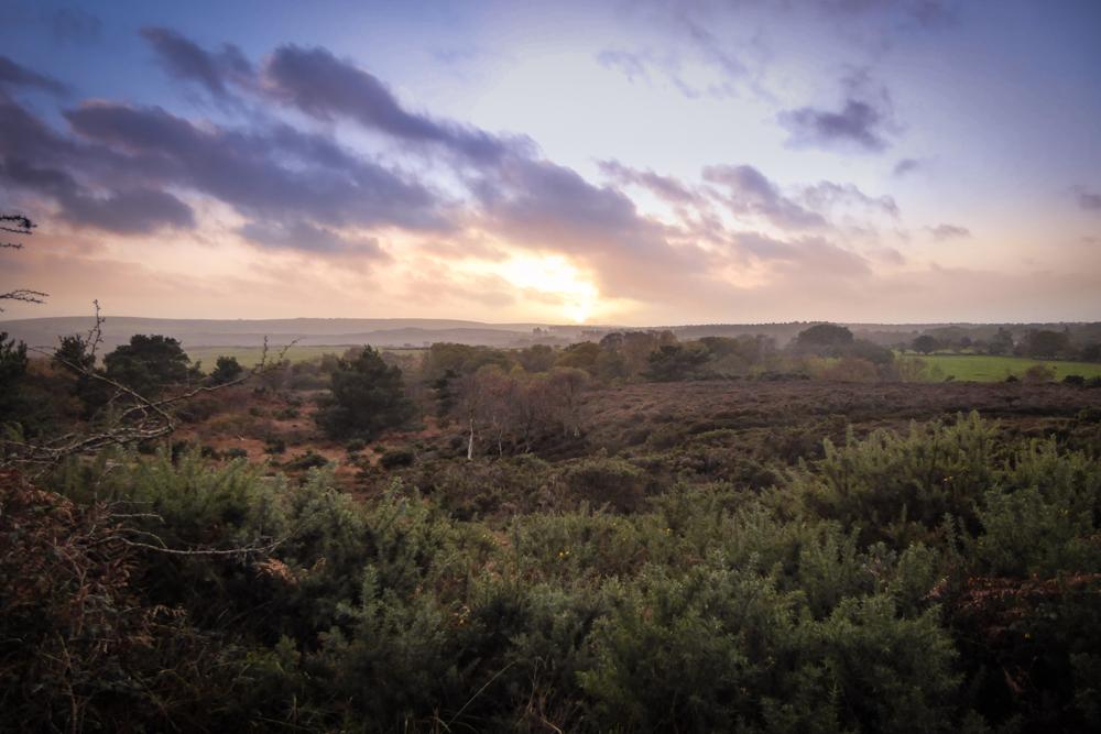 Sunset, Dorset, Studland, Enid Blyton