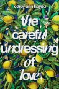 The Careful Undressing of Love, published in January 2017, books, novels