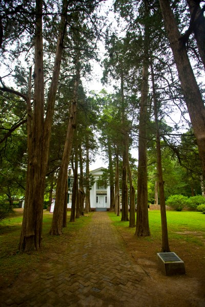 Rowan oak in Mississippi in the US is a literary must visit when in the area
