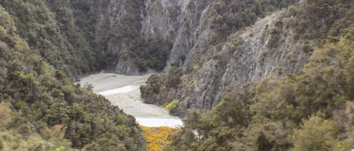 DSCN7818 700x300 - New Zealand by Train - The TranzAlpine with KiwiRail Scenic Journeys