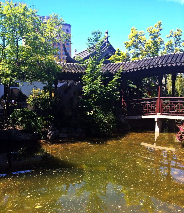 Blue Skies Lan Su Chinese Garden Portland Oregon