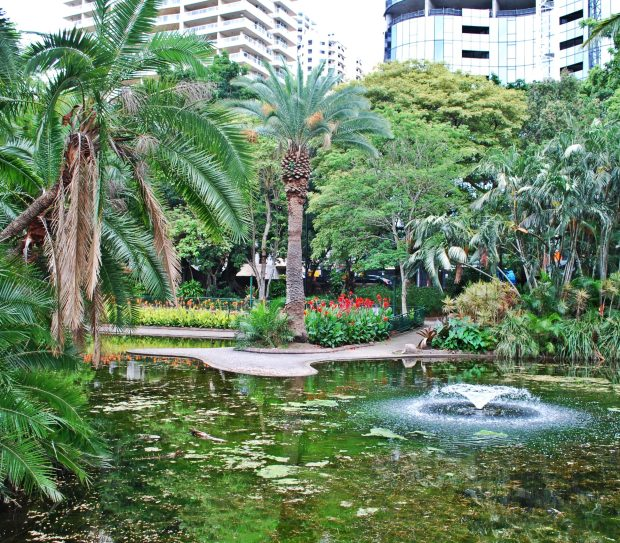 Brisbane's City Botanic Gardens