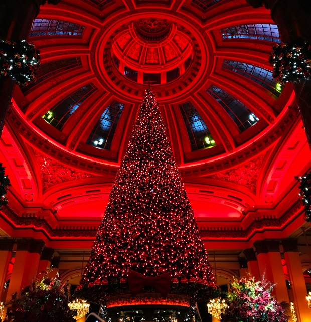 Christmas Tree at The Dome, Festive Things to do in Edinburgh, Scotland