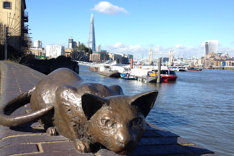 Thames walk cat view Tower Bridge: London secret walks