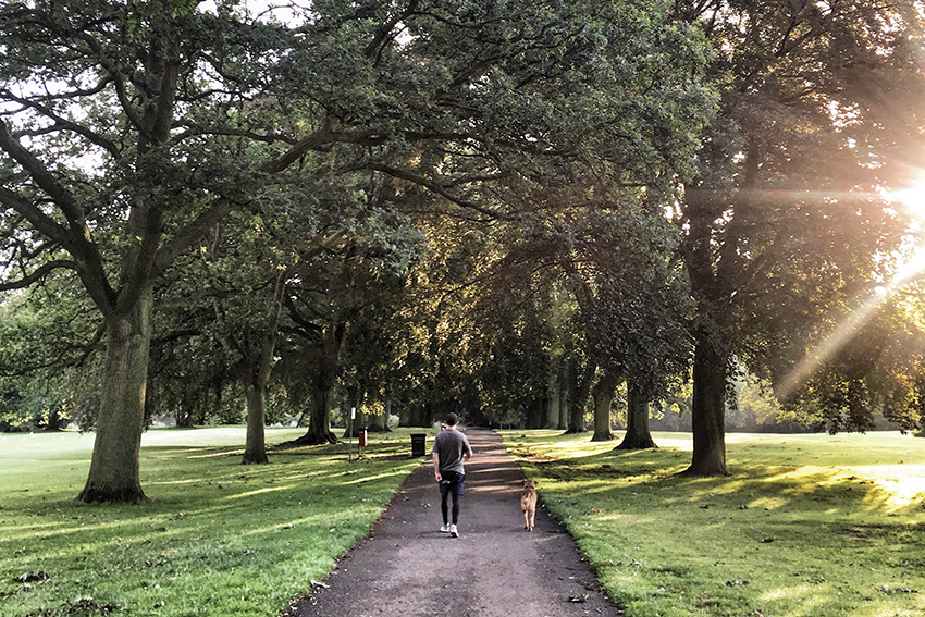 Northampton train station and destination guide (England) - walking in Abington park house and dog sittng