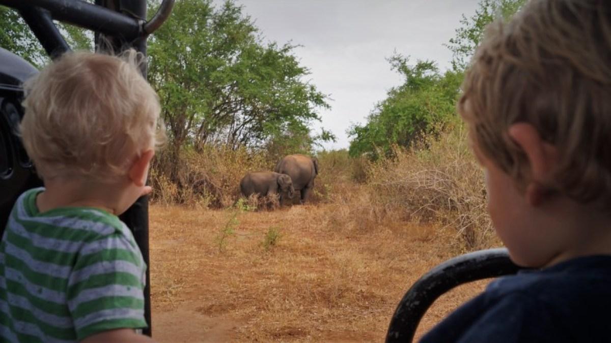 Safari family holiday
