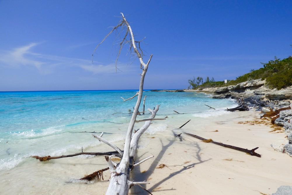 Half Moon Cay Bahama's