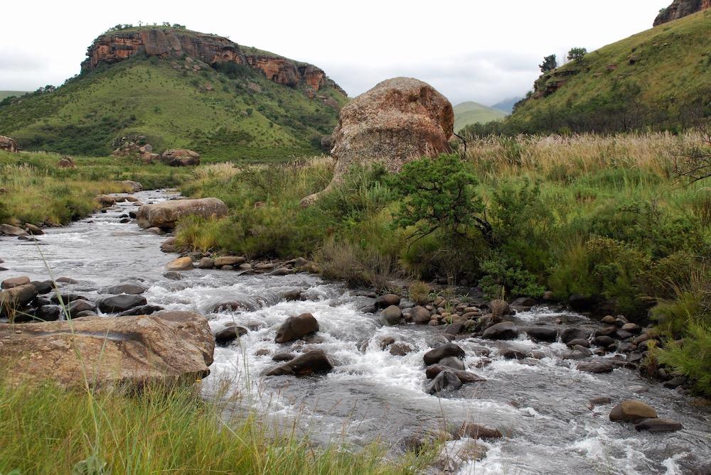 Drakensbergen KwaZulu-Natal Zuid-Afrika