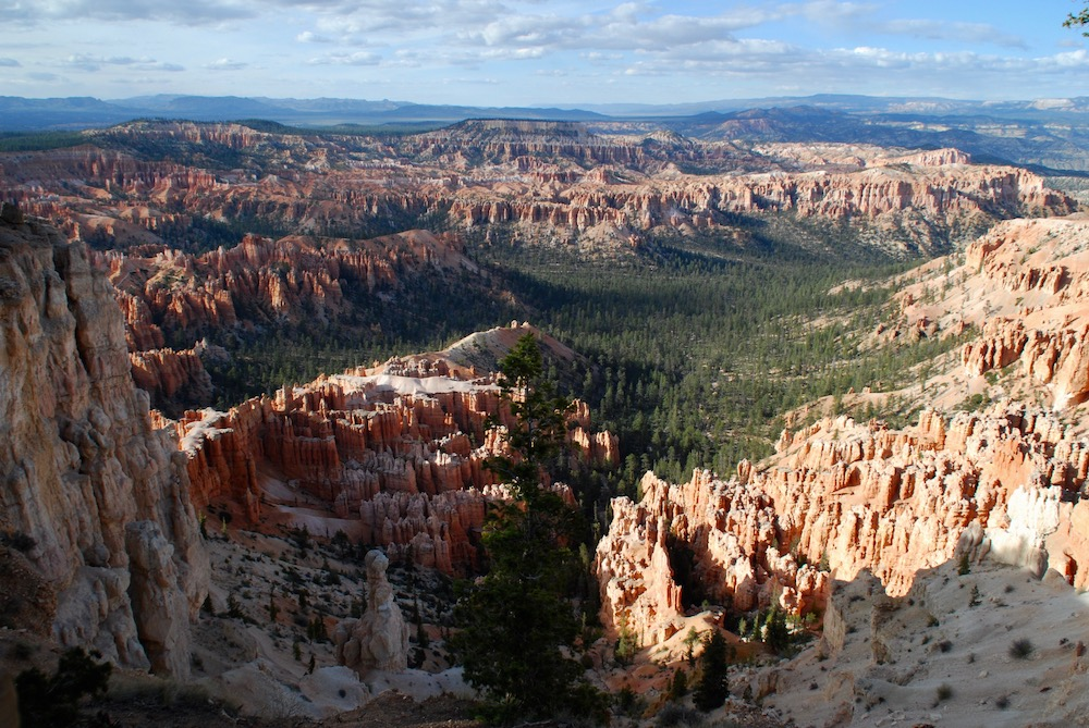 Bryce Canyon National Park Utah Verenigde Staten