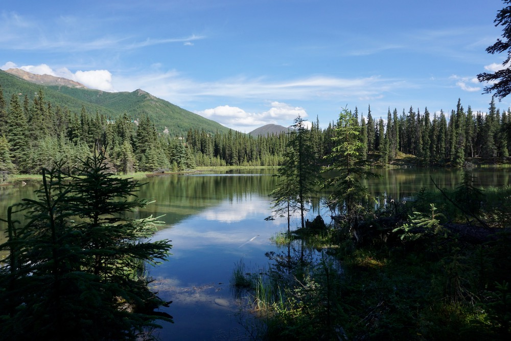 Horseshoe Lake Denali National Park Alaska Verenigde Staten