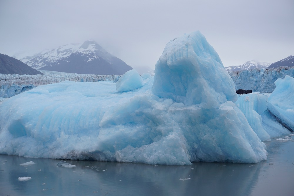 Boottocht Columbia Glacier Valdez Alaska Verenigde Staten